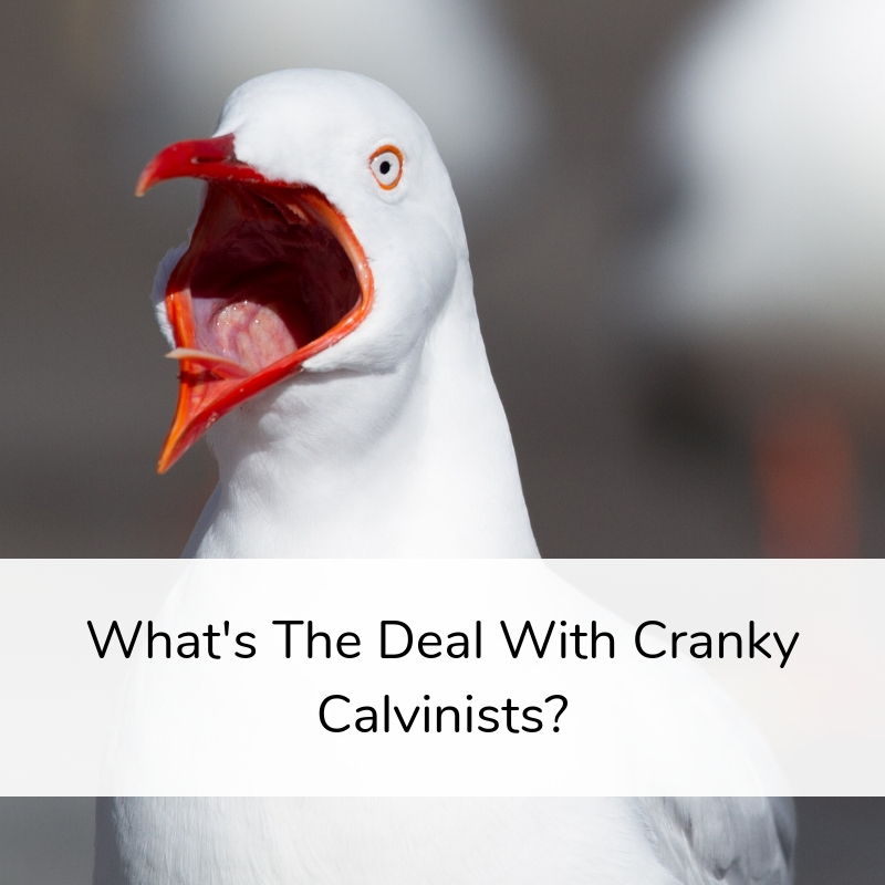 What's The Deal With Cranky Calvinists