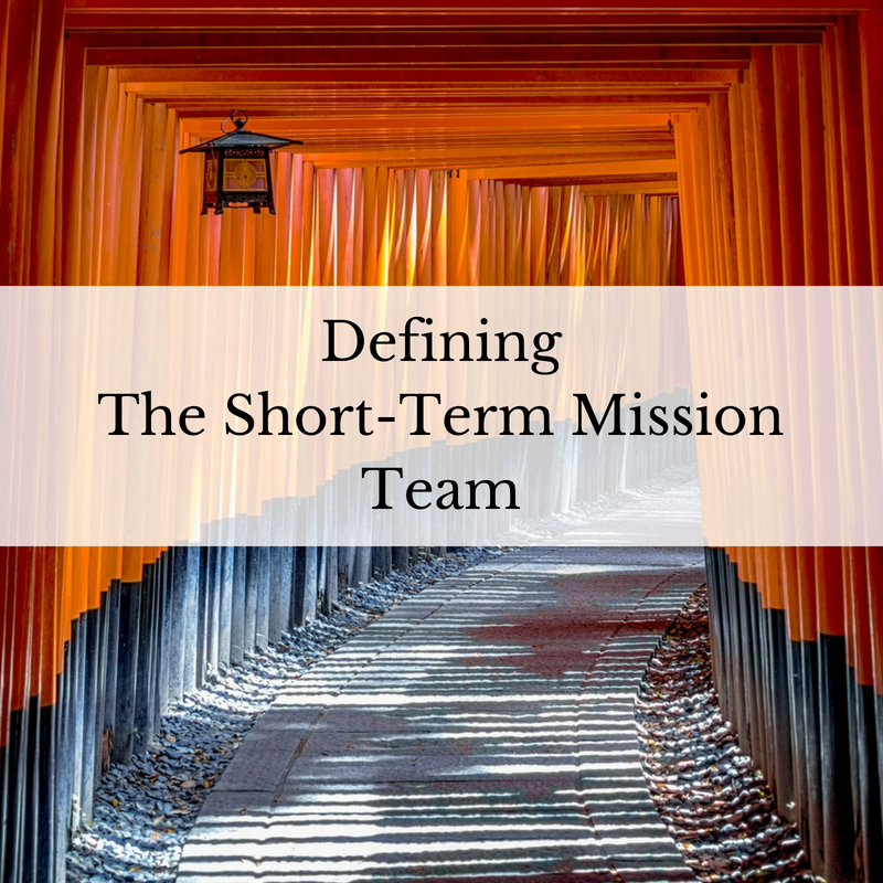Defining The Short-Term Mission Team