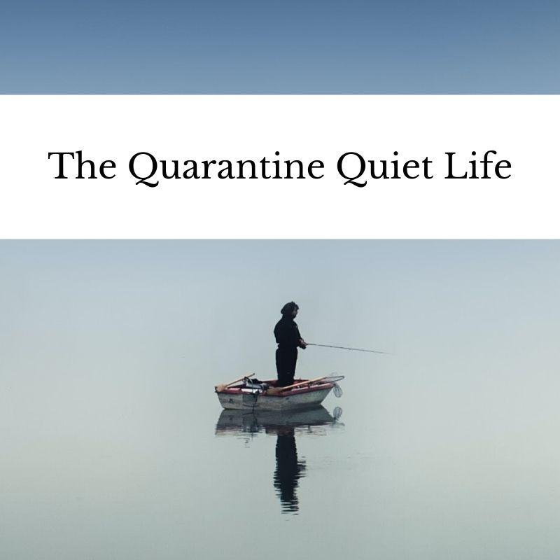The Quarantine Quiet Life